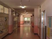 IMGP2334